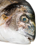 How to tell if frozen fish is bad - 10 Sure Signs a Frozen Fish is Bad